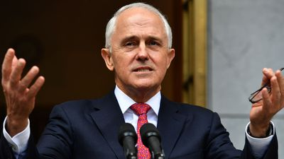 Turnbull appeals for unity after surviving leadership challenge by Dutton
