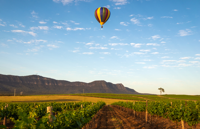 Hot air balloon floats over Hunter Valley winery