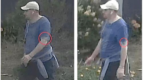 Police are looking for a man who allegedly sexually assaulted a woman pushing a pram in the Victorian suburb of Mornington.