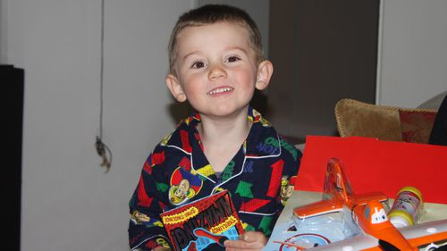 William Tyrrell vanished while playing hide-and-seek in the garden of his foster grandmother's home in Kendall, New South Wales, on the morning of September 12, 2014.