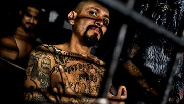 MS-13: How infamous gang grew from stoned youths to ruthless criminals