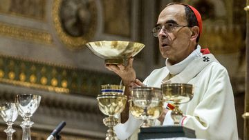 Barbarin offered his resignation to the Pope after a court found him guilty of failing to report to authorities allegations of sexual abuse of minors by a priest.