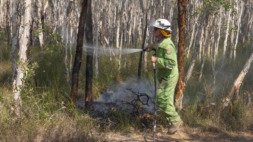 Firefighters extinguish spot fires in the suburb of Noosa North Shore, in Queensland, Wednesday, November 13, 2019