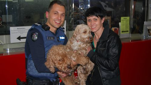 Stolen pooch returned to overjoyed Melbourne owner three months after dog-napping