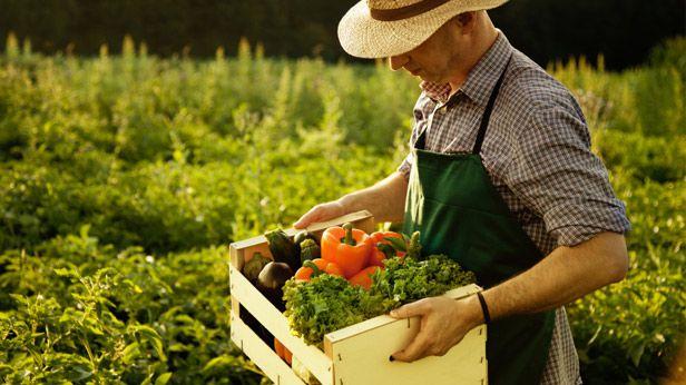 Australia's Best Farmers' Markets