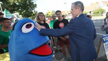 Bill Shorten pats a fish. (AAP)
