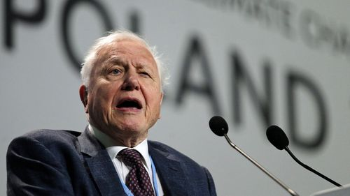 "Sir David Attenborough has told a U.N. gathering that the ""collapse of our civilizations and the extinction of much of the natural world is on the horizons"" ."
