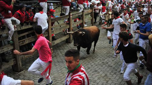 The 'Running of the bulls' is one of Spain's most infamous tourist drawcards.