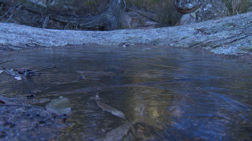 The bureau expects cold overnight temperatures to persist until early next week. Image: 9News