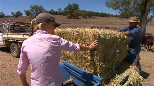 The package aims to offer financial and mental health support to struggling farmers. Image: 9News