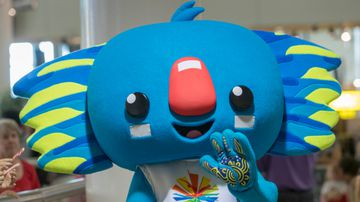Gold Coast City Council on a mission to rescue Borobi