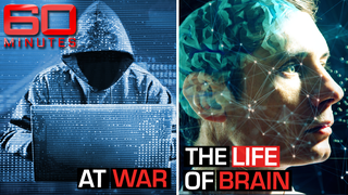 At War, The Life of Brain
