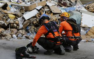 Chilean rescue team rule out all signs of life under Beirut rubble