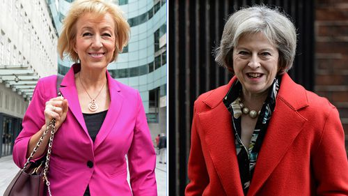 British prime ministerial candidate Andrea Leadsom faces backlash over motherhood comments