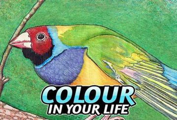 Put Some Colour in Your Life