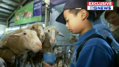 There are some great-and cuddly- attractions on-site at the Sydney Easter Show. (9NEWS)
