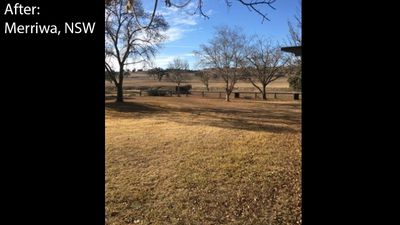 Viewers' farms before and after the drought