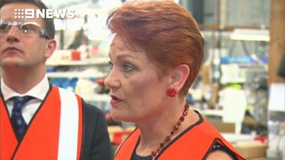 Queenslanders voting One Nation, Hanson