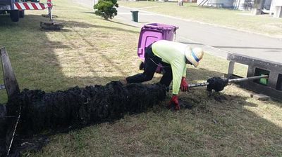 Sydney Water staff manually removing wipes.