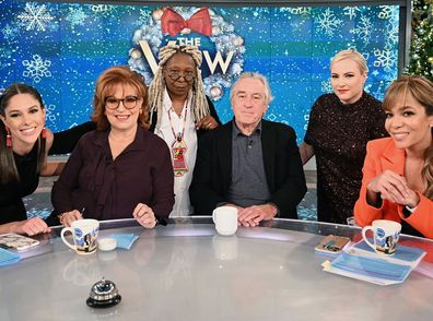The View, Whoopi Goldberg, Meghan McCain, Robert De Niro, panel