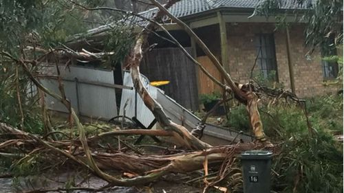 Wild winds batter Adelaide, with severe weather warning issued for South Australia's far south