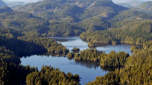 The picturesque Vancouver Island is close to where the feet keep washing ashore.