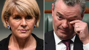 Julie Bishop and Christopher Pyne.