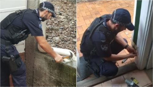 'Above and beyond': Queensland Police officers take special care of widow after home invasion