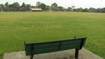A man is in court accused of exposing himself to a woman at a park in North Parramatta.