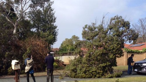 Thousands of properties left without power as severe winds hit Western Australia