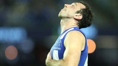 <strong>16. North Melbourne Kangaroos</strong>