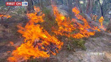 VIDEO: NSW set for dangerous fire season