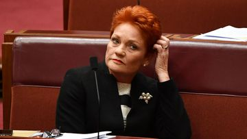 Pauline Hanson appeared to suggest the Port Arthur massacre was a government conspiracy.