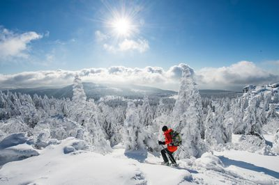 January 21, 2016 - Colder temperatures in January enabled this skier to make his way through heavy snowon Grosser Arber mountain in southern Germany. (AAP/Armin Weigel)