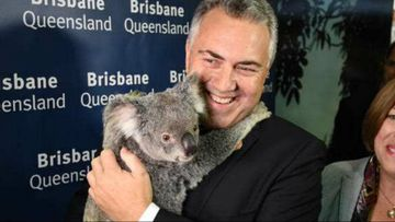 G20 afternoon update: Joe Hockey gets cuddly with Kim K's koala, while protesters turn green