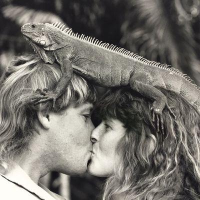 Steve Irwin: 1991