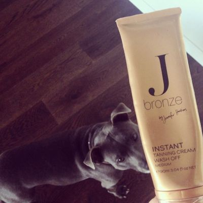 <p>Even Jennifer Hawkins' dog loves an instant tanning session</p>