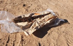 Man finds historic WWII Thompson submachine guns buried at Lake Hume reserve, Victoria