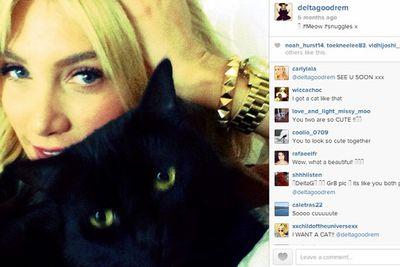 @deltagoodrem: #Meow #snuggles x