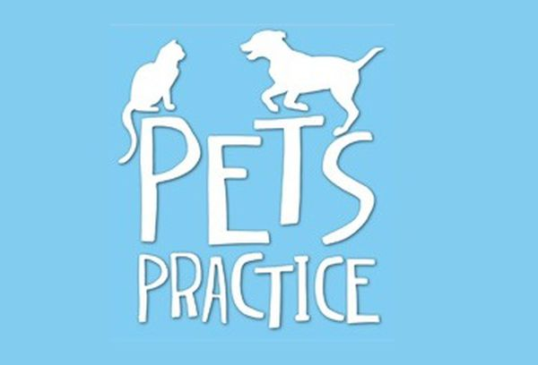 Pets Practice