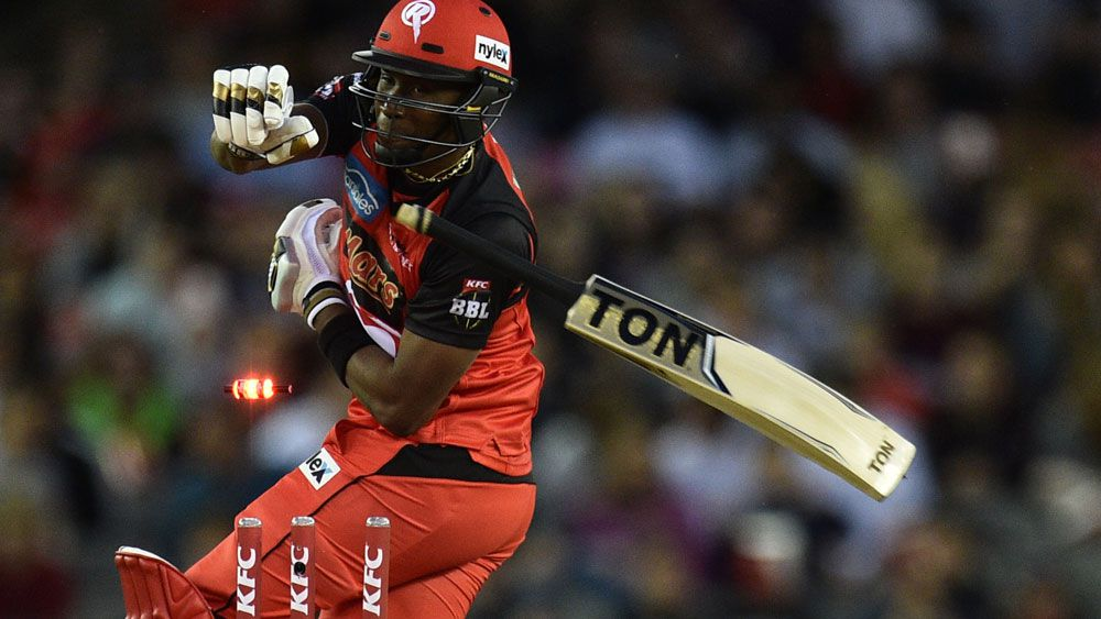 Renegades rule out injured Bravo for rest of Big Bash season