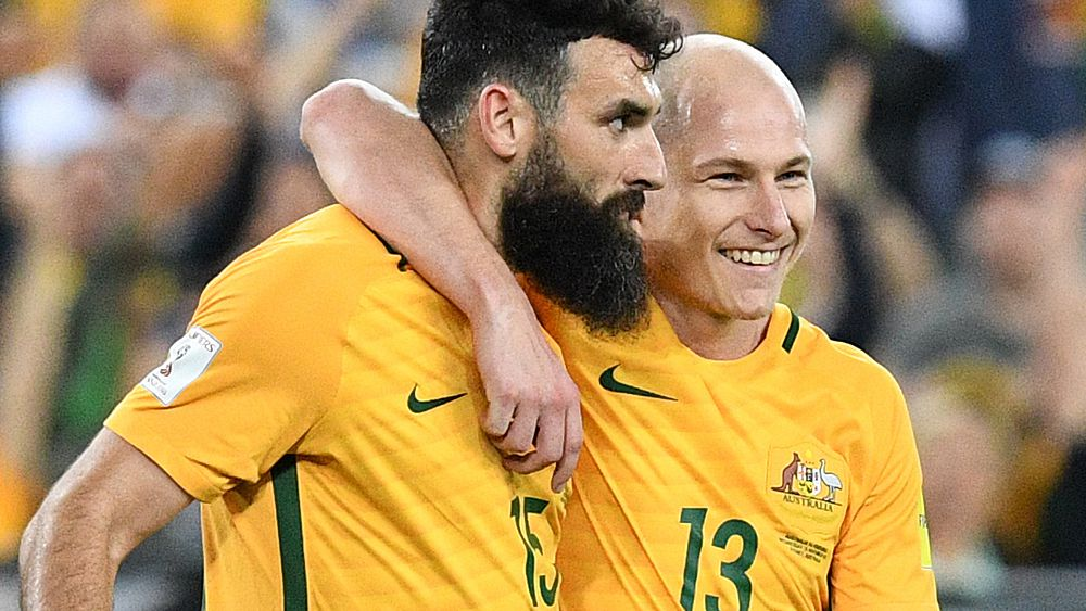 World Cup 2018: Bert van Marwijk can release Socceroos' creative spark, says Mark Schwarzer