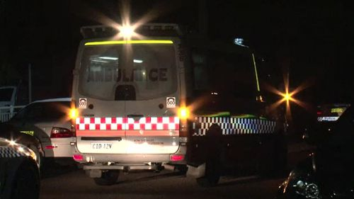 Blind man attacked with knives in Sydney home invasion