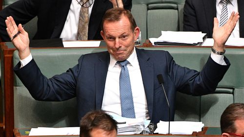 Tony Abbott has accepted an olive branch from new Prime Minister Scott Morrison with the indigenous envoy role.