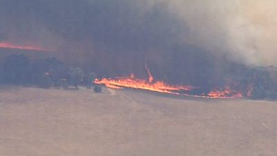 High temperatures and strong winds are fanning the flames of the Moyston blaze. (9NEWS)