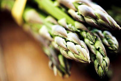 <strong>Asparagus</strong>
