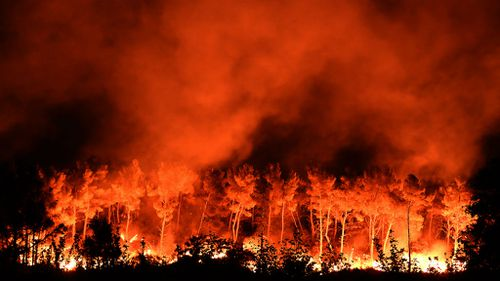 Thousands evacuated after wildfires burn though southern France and Portugal