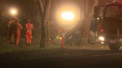Man dies after car hits tree in Victoria