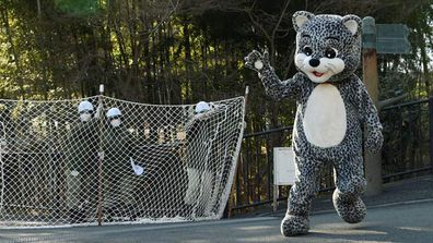 """<p>An unusually large snow leopard escaped from a zoo in Japan and attacked a keeper before being rounded up with the help of police and emergency services. </p><p> But don't worry; it wasn't a real snow leopard — as the beast's abnormally sized head and bipedal walking ability probably gave away. </p><p> The whole saga was just part of Japan's annual animal escape drill at the Tama Zoo. </p><p> Visitors to the zoo on the western fringe of Tokyo on Tuesday got to witness the dramatic operation of putting the area into lockdown as the snow leopard was caught with the help of a fake tranquilliser dart. </p><p> While it was attempting to flee, the """"snow leopard"""" charged and """"maimed"""" a keeper who had to be carted off in an ambulance. </p><p> The animal was, of course, a zookeeper dressed in a suit and the whole spectacle was a staged event to keep keepers on their toes. </p><p> """"In the event of a big earthquake, a tree could fall on a cage, or many other things could occur that may lead to an animal escape,"""" zoo director Yutaka Fukuda said. </p><p> """"We think it is very important, and it is our responsibility to carry it out with seriousness."""" </p><p> Other escaped animals include zebras, orang-utans and even a rhino. </p><p> Take a look through to see how they unfolded. (All images from Getty) </p><p> </p>"""