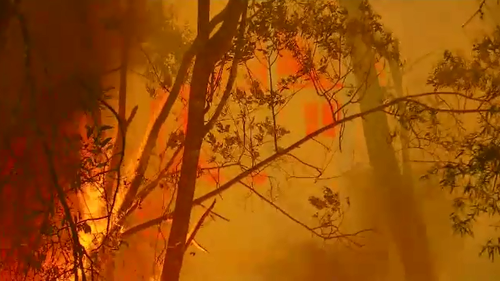 Firefighters are still tackling over 150 blazes across NSW.